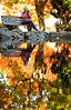Lithia Park in Ashland.<br /> © 2011 Jim Craven, All rights reserved.