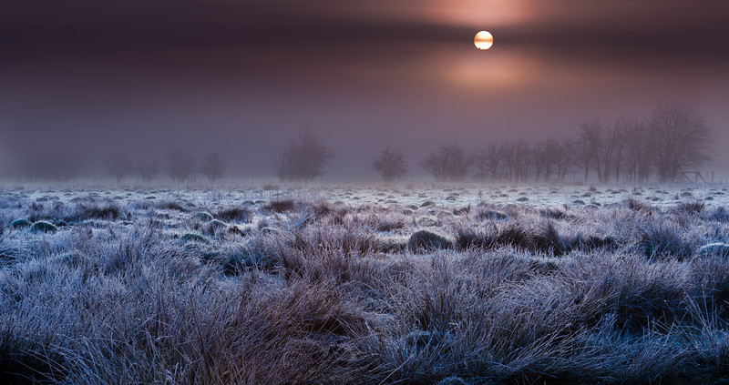 Sunrise over foggy, frosty pasture in White City, Oregon.<br /> © 2011 Jim Craven, All rights reserved.