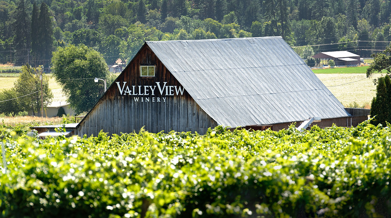 Valley View Vineyard, Ruch, Oregon<br /> © 2011 Jim Craven, All rights reserved.