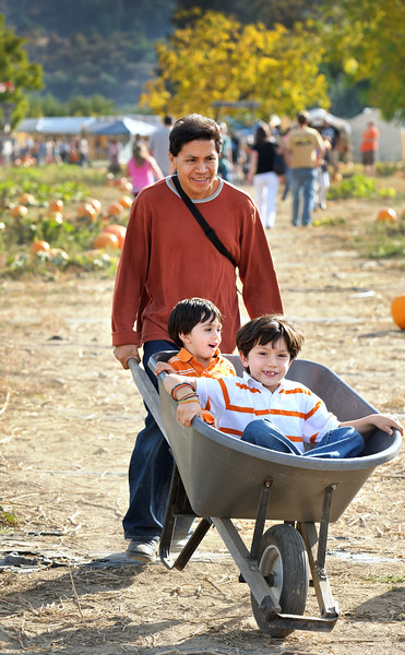 Searching for pumpkins in Phoenix, Oregon.<br /> © 2011 Jim Craven, All rights reserved.