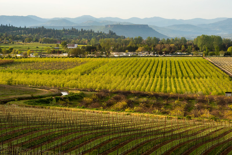 Rogue Valley agriculture.<br /> © 2013 Jim Craven, All rights reserved.