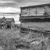 Abandoned Homestead Farm