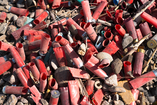 Littered shot gun shells in the desert outside of Las Cruces, New Mexico.