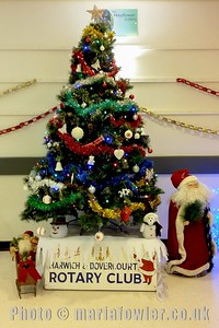 Rotary Christmas Tree at Fryatt Hospital, Dovercourt.