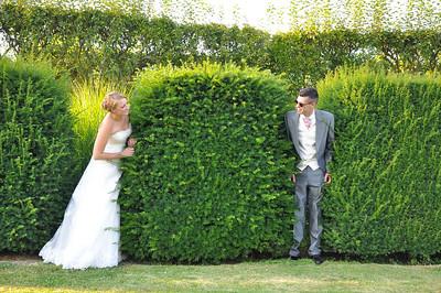 Wedding Portfolio  349