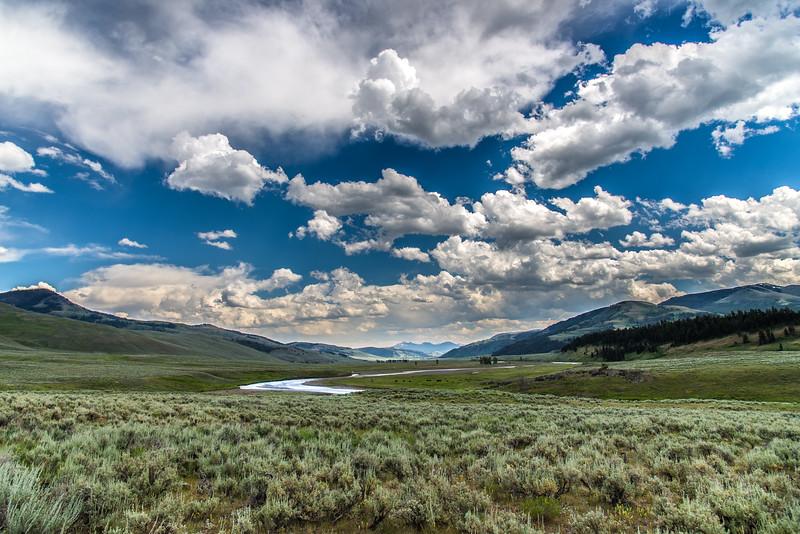 Lamar Valley - Yellowstone National Park