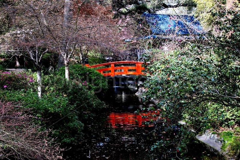 Garden Crossing