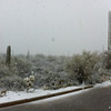 Snow at Ironwood, Feb. 20