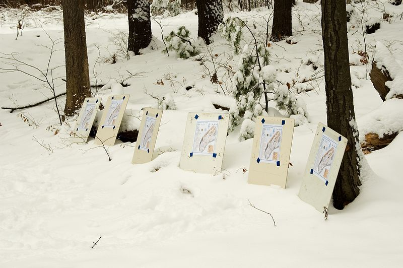 <b>Master maps all lined up in the snow</b>   (Nov 13, 2004, 10:04am)