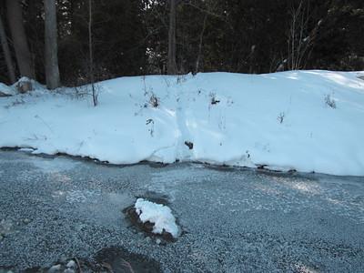 Beaver - trail in snow near frozen creek