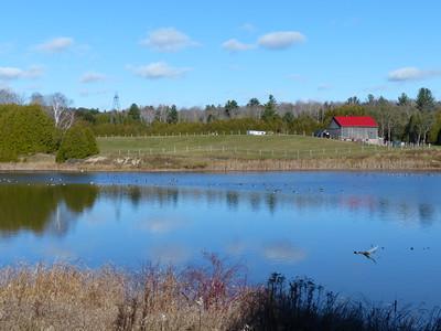 Garden Hill Pond