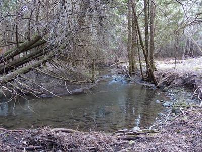 Cobourg Creek