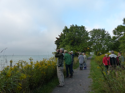 WBFN members walking along the waterfront trail and looking for birds on Lake Ontario
