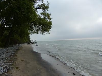 Sandy shore along Lake Ontario was a good spot to show tracks