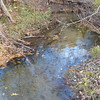 Brook Trout - section of creek showing redd location near photo centre