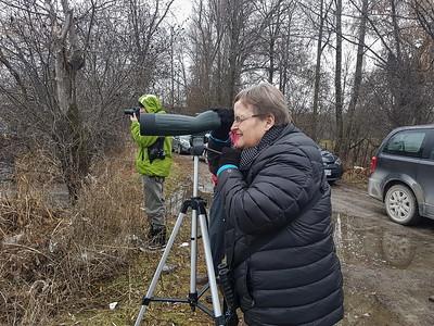 PFN members bird watching from Pengelly Landing, Rice Lake
