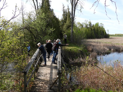 PFN members observing birds from the bridge over Miller Creek