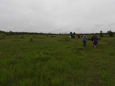WBFN members walking the trail at Hazel Bird Nature Reserve