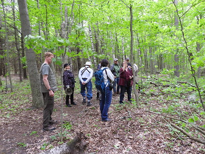 PFN members admiring an old growth White Oak