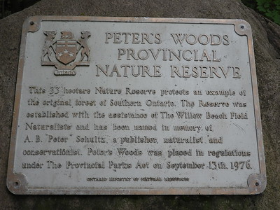 Plaque at entrance to trail in Peter's Woods