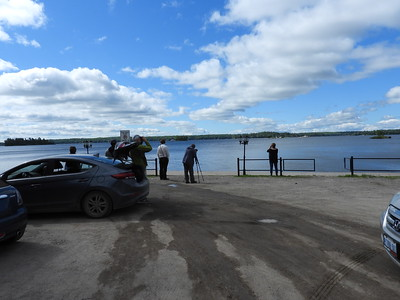 PFN members scanning for birds on Stony Lake near Viamede Resort