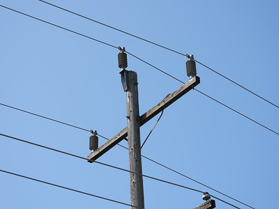 Hydro pole upon which the Hairy Woodpeckers were searching for food.