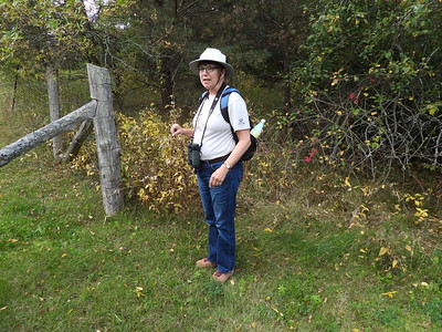 Anne Barbour starting the KFN nature walk with a discussion on Dog-strangling Vine
