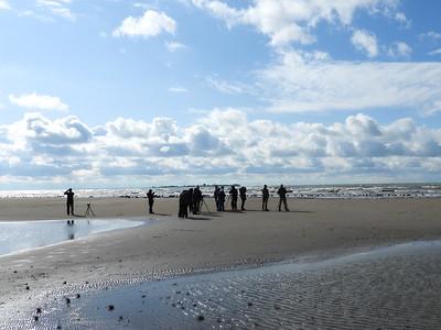 OFO members viewing shorebirds and gulls at Presqu'ile