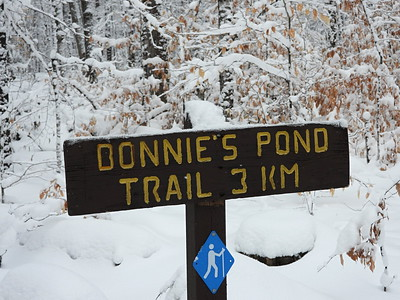Start of the Bonnie's Pond Trail