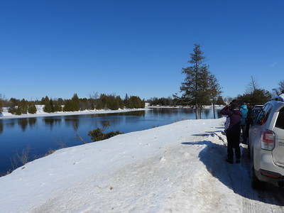 PFN members viewing waterfowl on the Otonabee River