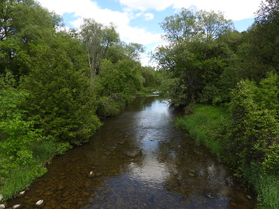 Ouse River with ideal Crayfish habitat