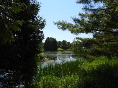 Pond at Nawautin