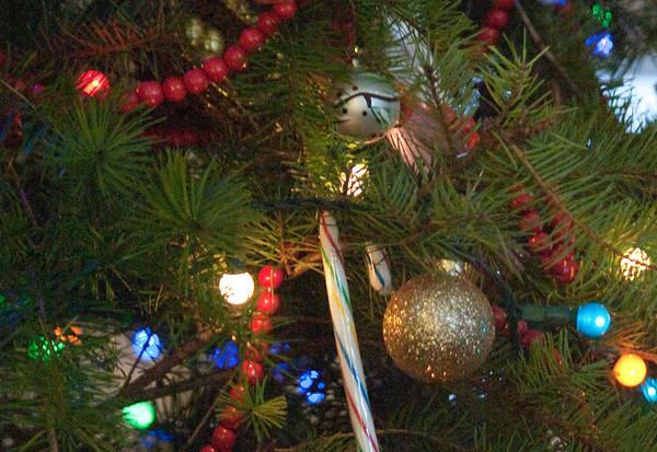 Christmas 2010 @ the Townsend Condo