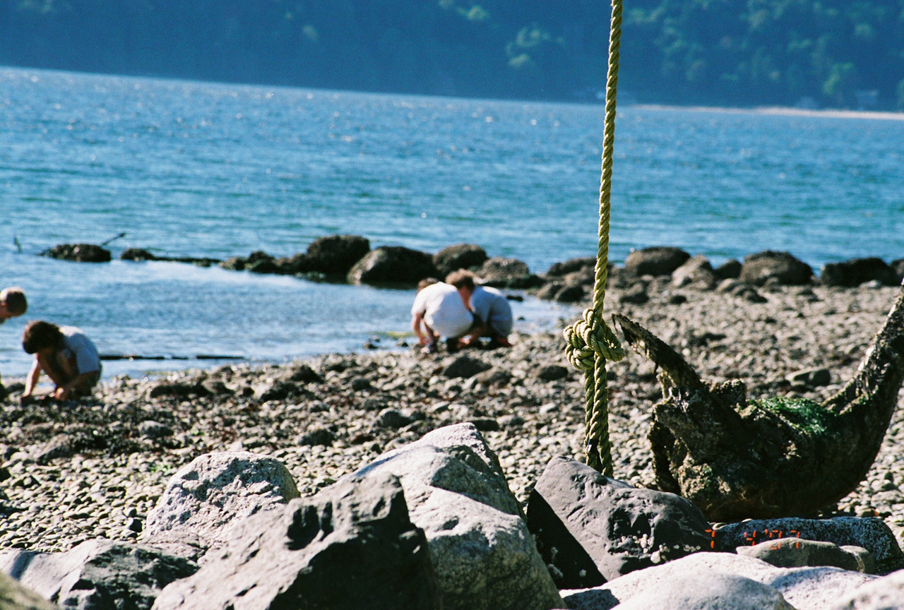 Exploration of beach, Vashon Island, July 4th weekend, 2007.  They were actually looking for jellyfish to explode.