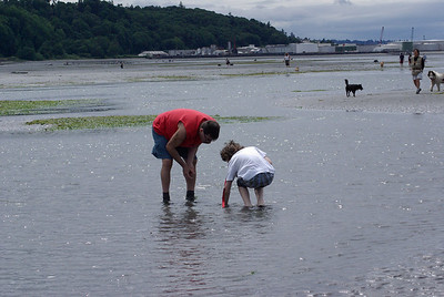 There's lots of interesting creatures at low tide.  Edmonds Beach Dog Park.
