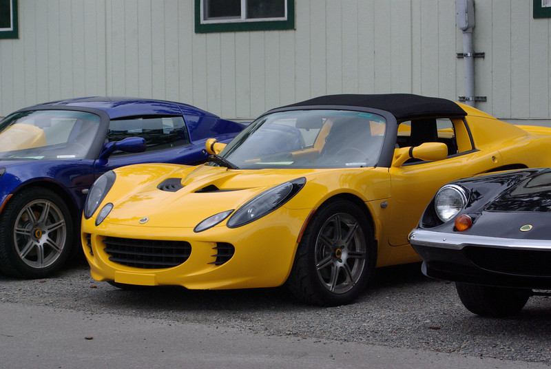 More Lotus.