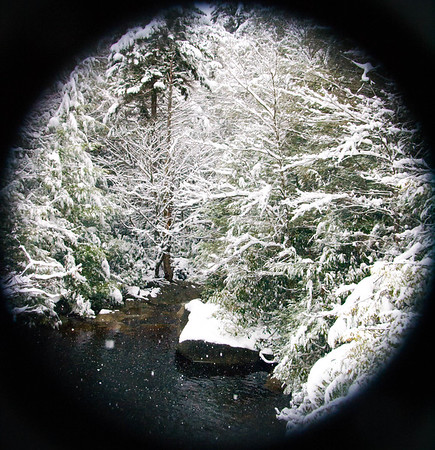 Snow falls on a Blackwater tributary