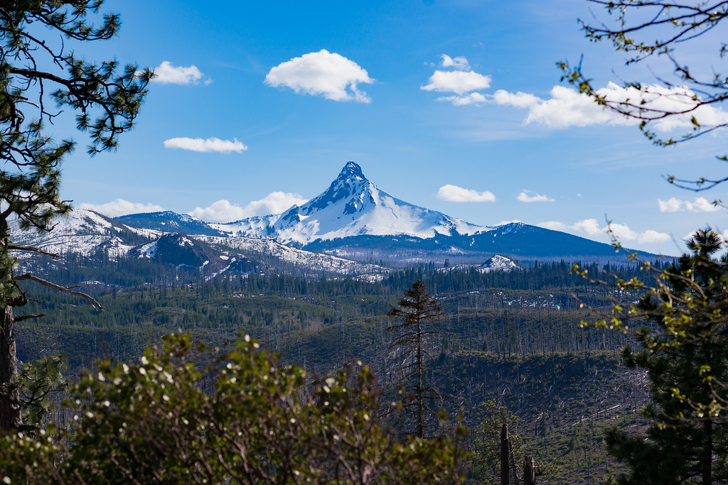 Mount Washington, OR, May 2019