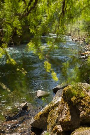 Clackamas River, Three Lynx, OR, May 2019