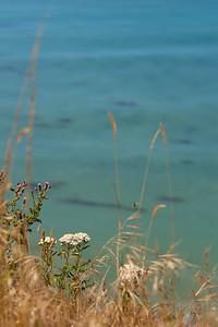 Strait of Juan de Fuca near Sequim, WA