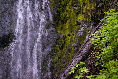 Waterfall near the Ohanapecosh River, WA