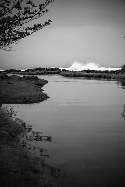 Tide pools in Hilo, Hawaii