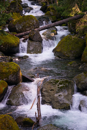 Cascades on Nickel Creek, Rainier National Park, WA