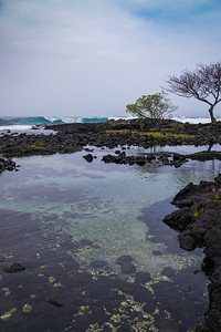 Tide pools in Hilo, Hawaii