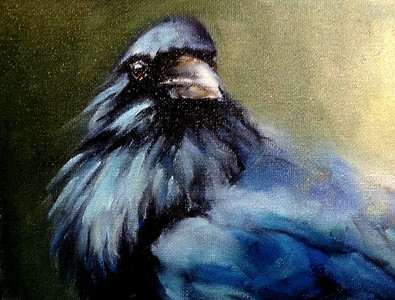 Raven oil painting - SOLD
