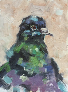 Pigeon portrait in oil  $275