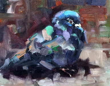 Painting of a pigeon 8 x 10 $275