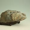"""Longevity"" (天寿 Tenju); 17"" W x 14"" D x 9 "" H;  Jadeite from Eel River and walnut"