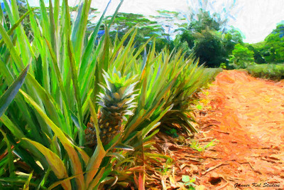 Pineapple Road