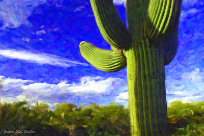 Saguaro in the Sun